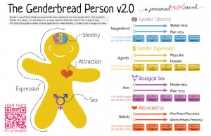 gender gingerbread